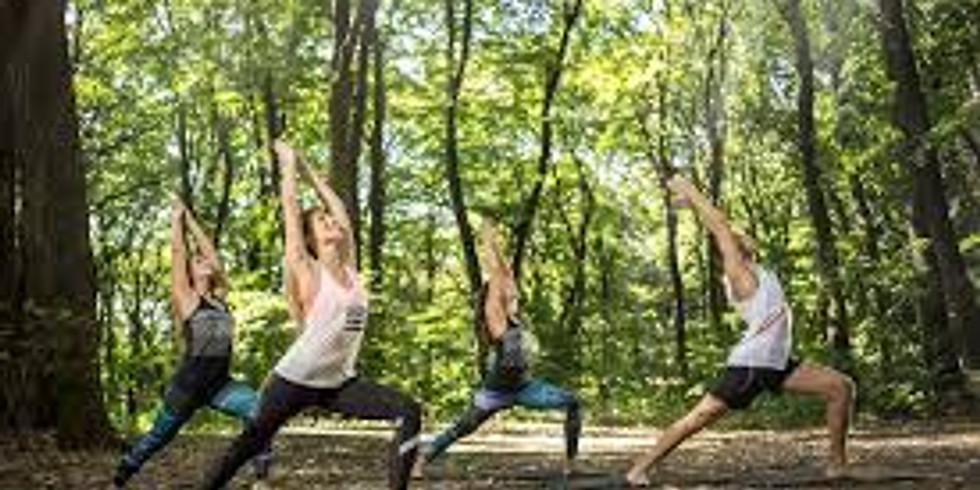Yoga au jardin à Arlon - jeudi début de soirée