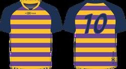 S202XJ Jersey Purple Gold Navy.png