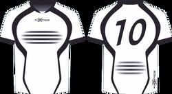 S201XJ white black team jerseys.png