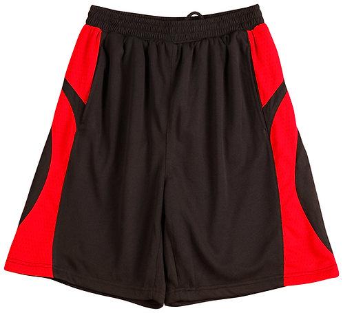 Mens Slam Dunk Basketball Shorts WSSS23