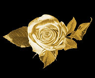 Golden%20Rose_edited.jpg