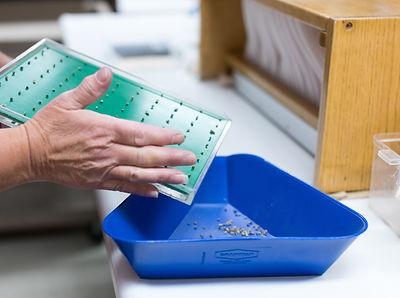 Seed germination testing