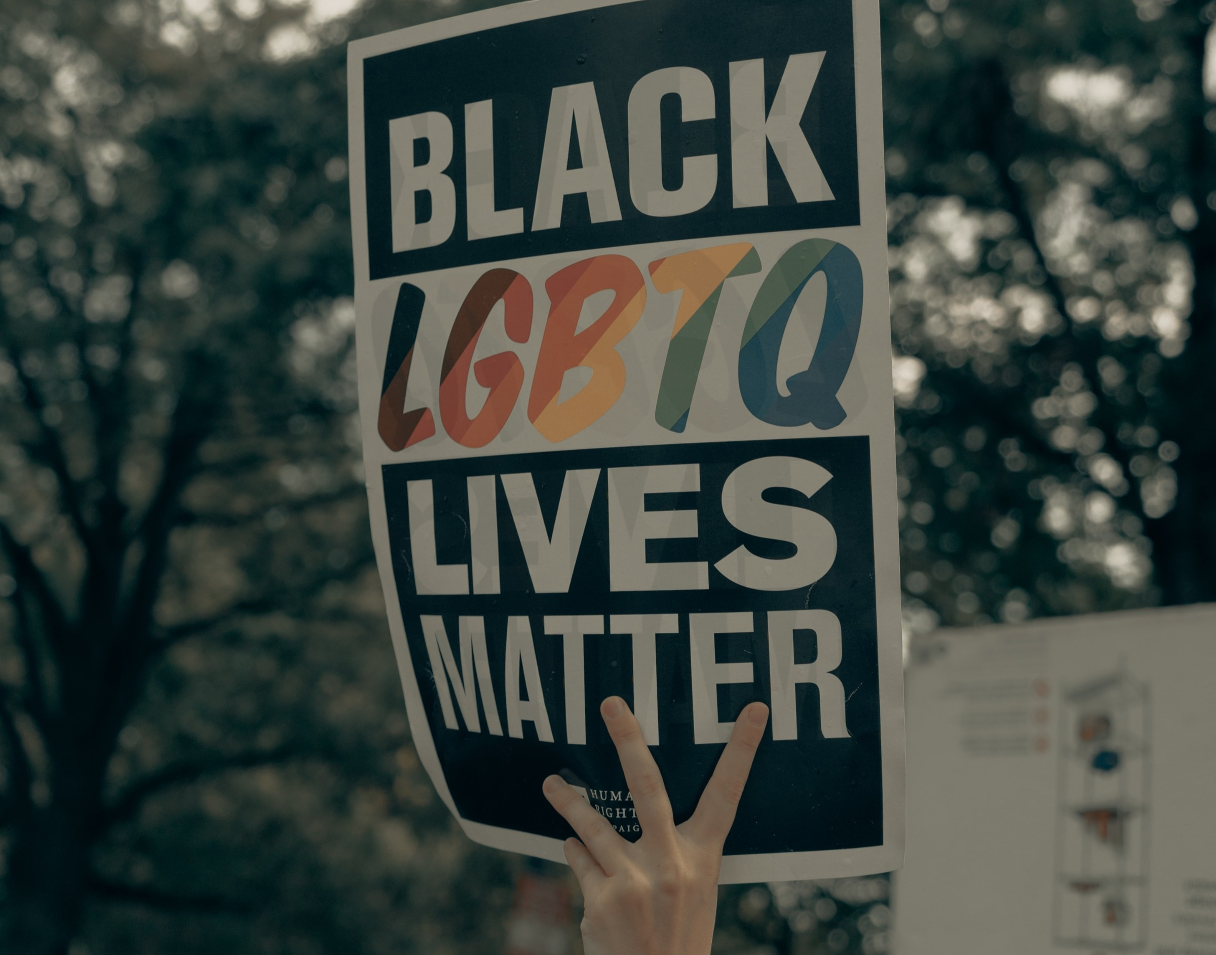 LGBTQ+ BLM protest sign