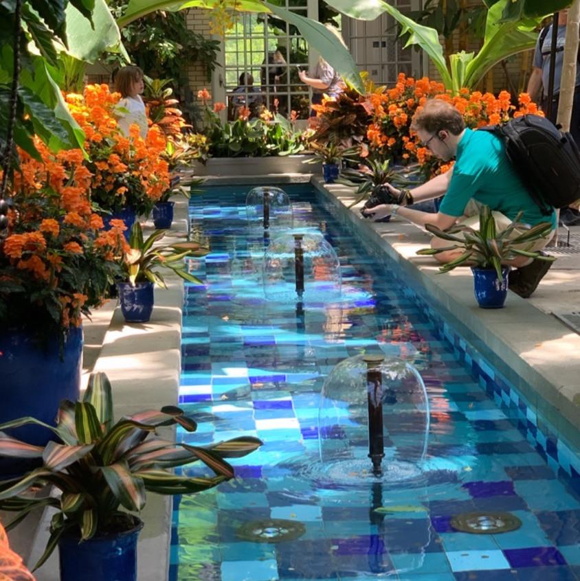 Pond next to orange flowers