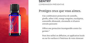 prime sentry.png