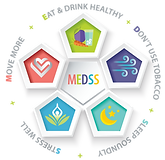 MEDDS_V4-Transparent.png