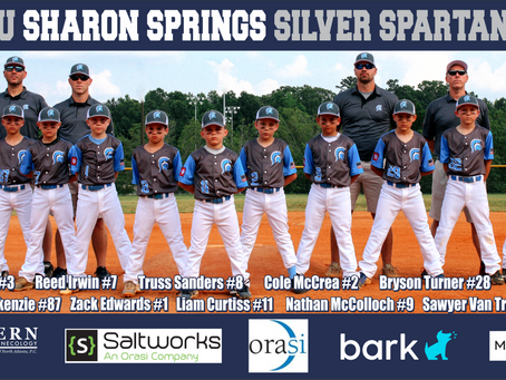 Sharon Springs Silver Spartans