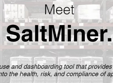 Saltworks SaltMiner: A New Solution for AppSec Management