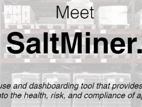 Saltworks SaltMiner: A New Solution for AppSec Management