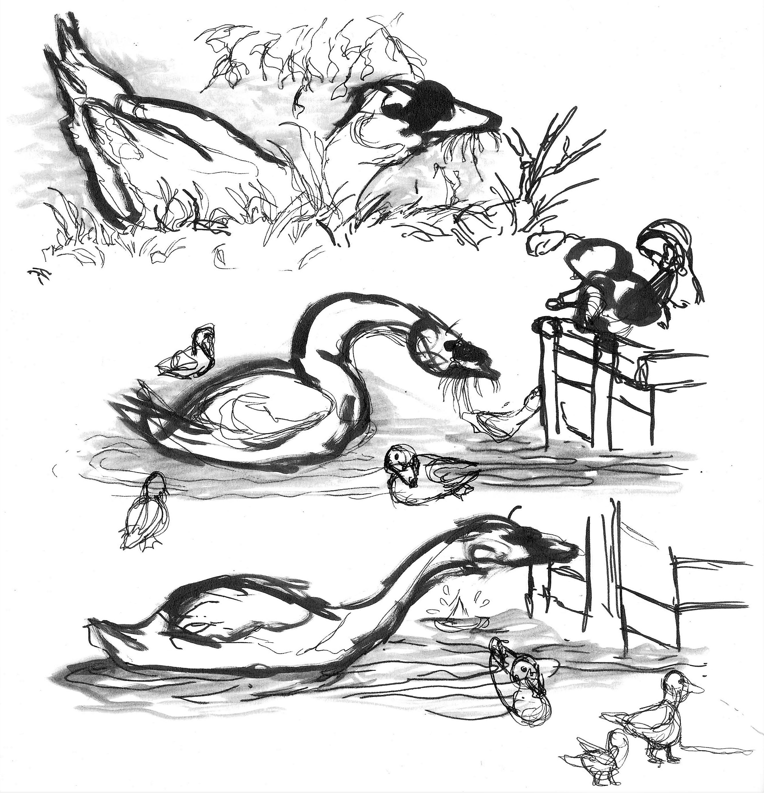 Hungry swan