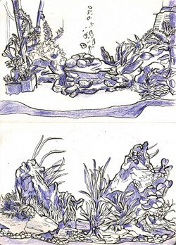 Aquascape studies