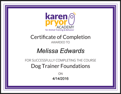 karen pryor dog trainer foundations course