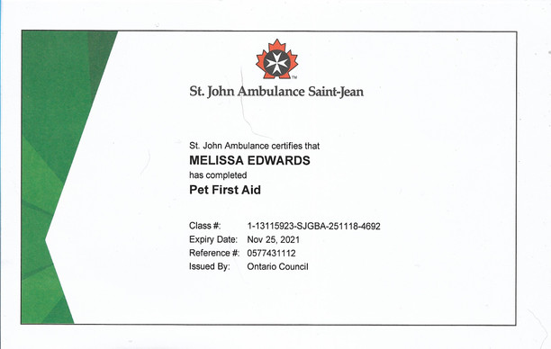 st johns ambulance pet first aid