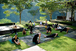 Gita Bali Retreaters in various yoga postures