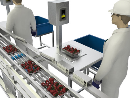 Helping to reduce giveaway and achieve greater efficiency in the soft fruit sector