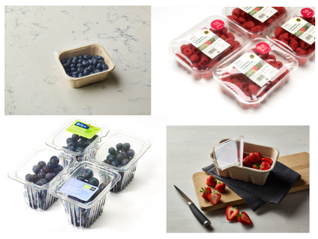 Sustainable Packaging in the Soft Fruit Sector