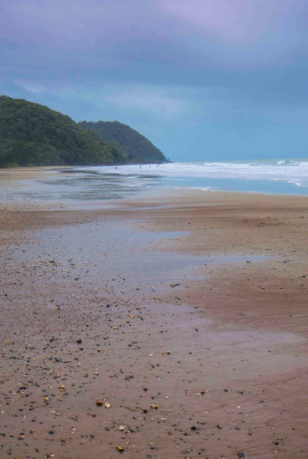 Cow Bay Beach, Daintree National Park