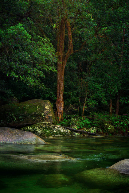 Mossman Gorge Queensland