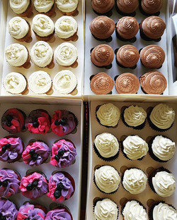 Cupcakes for Catering