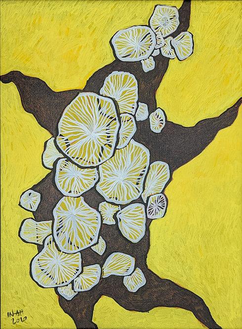 Original - Yellow Dance I