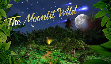 online_moon.jpg