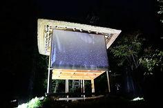 rain_biofhoton.jpg