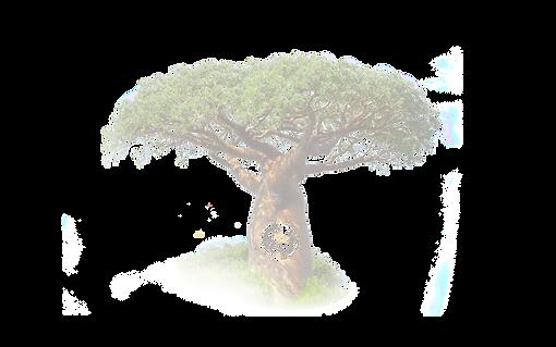 Tree-w_bird-cir-transparent_edited.png