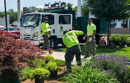 Level Green Landscaing crew working.jpg