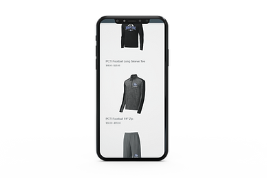 phone - online store.png