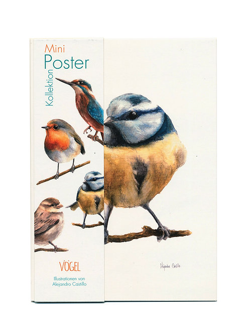 Mini-Poster Vögel