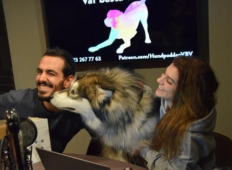 Poddinspelning på schemat - Hundföretagande