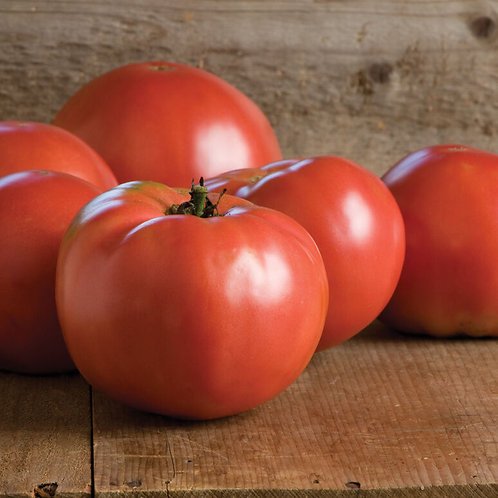 'Martha Washington' tomato (F1 hybrid)