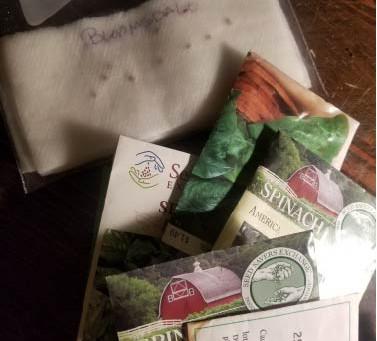Seed longevity: Are my seeds still good?
