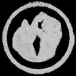 Logo_Musicality_Białe_edited_edited.png