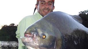 Pesqueiro Pantanosso - Muitos tambas e uma surpresa inusitada