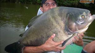 Pesqueiro Pantanosso – Muito mais do que um pesqueiro e com a natureza em primeiro lugar