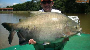 Pesqueiro Pantanosso – Superando todas as expectativas neste verão