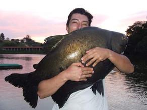 Pesqueiro Pantanosso – Os gigantes quebraram tudo no Panta em um show de pescaria