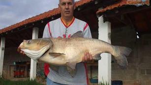 Pesqueiro Pantanosso – Massas Paturi fazendo milagres no Pantanosso