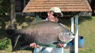Pesqueiro Pantanosso - Atividade total na pescaria