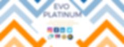 MCBA EVO PLATINUM social media managemen