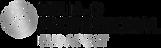 HDP_szalon-logó_fekete.png