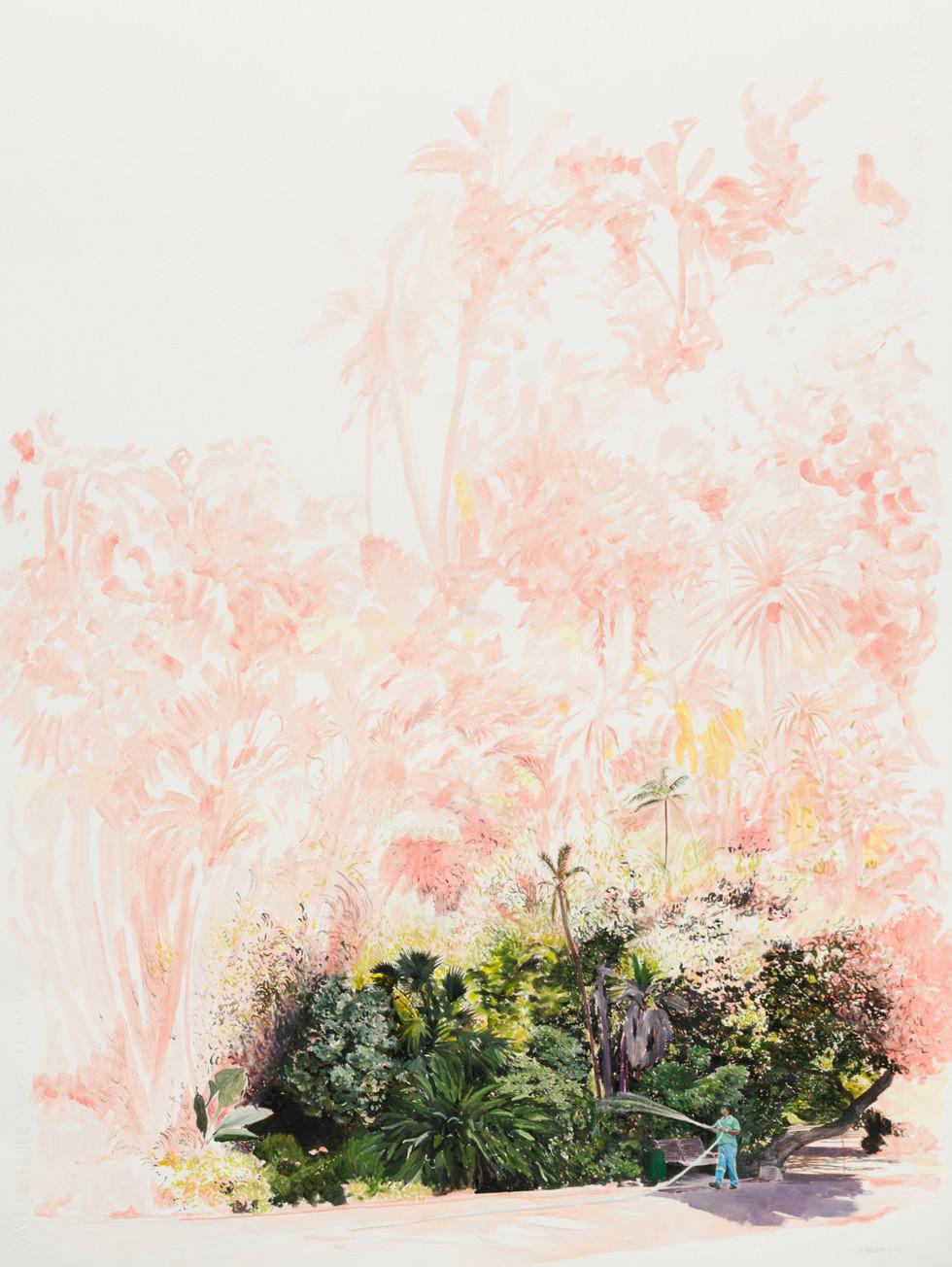 KIRSTEN BEETS. Grow, 2017. Oil on paper. 810 x 615mm. Framed.JPG