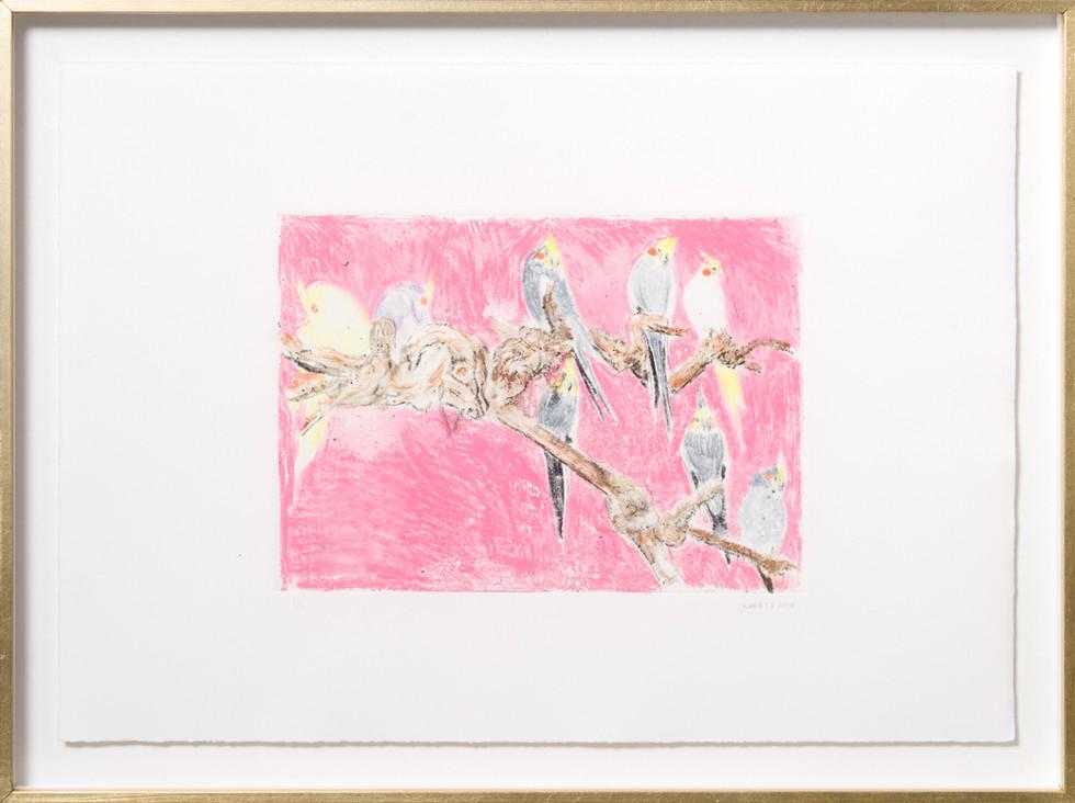 KIRSTEN BEETS. Blush, 2018. Watercolour monotype. 315 x 420mm. Framed.JPG