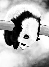 Hang In There Panda