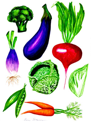 Vegetable Collection