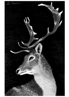 Inktober Deer