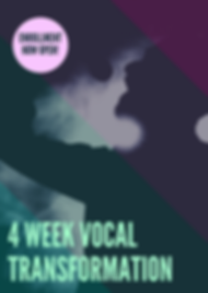 4hr Vocal Mastery.png