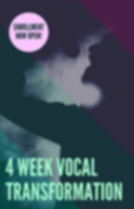 4hr Vocal Mastery_edited.png