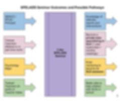 SPELADD Seminar Outcome Pathways..JPG